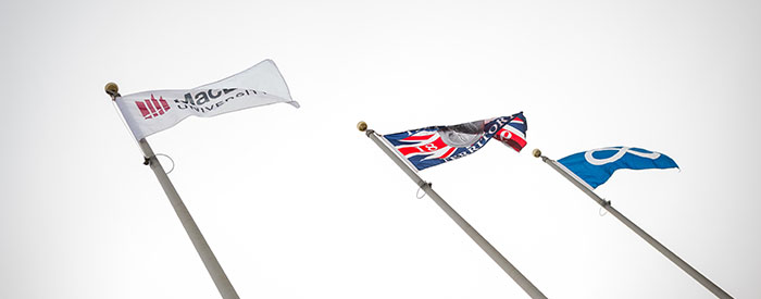 IMAGE_STORY_Flags